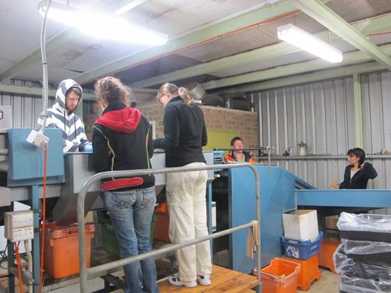 10_Fruit Picking Adelaide
