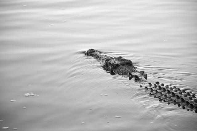 Kakadu-National-Park-2