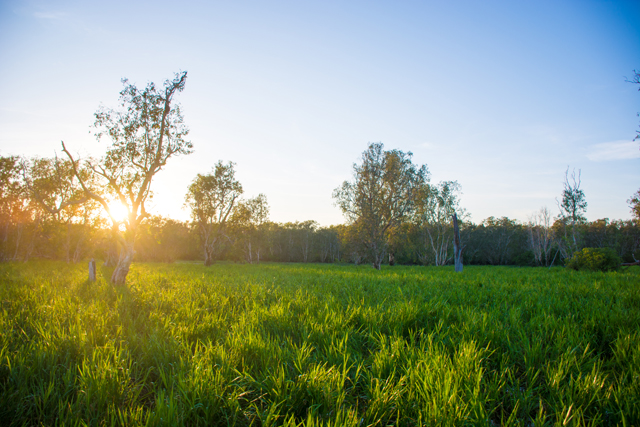 Kakadu-National-Park-4