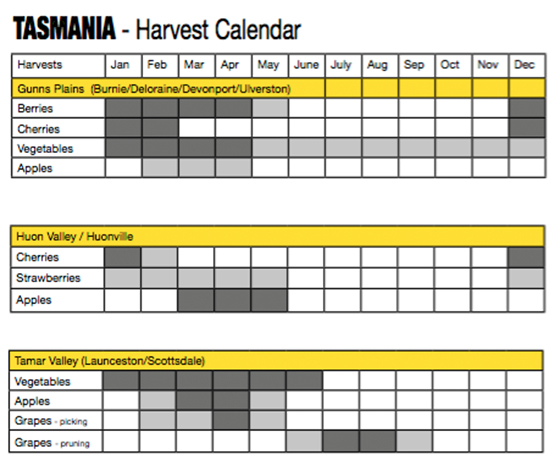 3_Fruit Picking Calendar_Tasmania