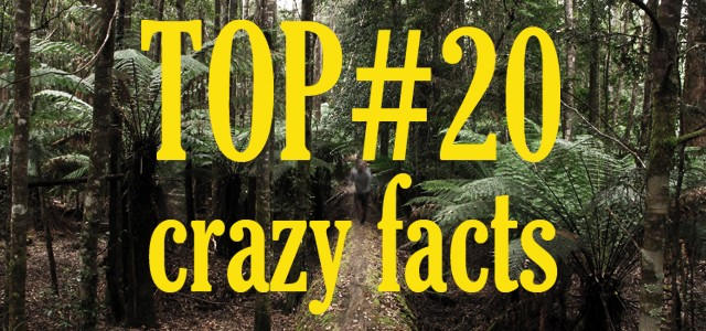 20 crazy facts about Australia
