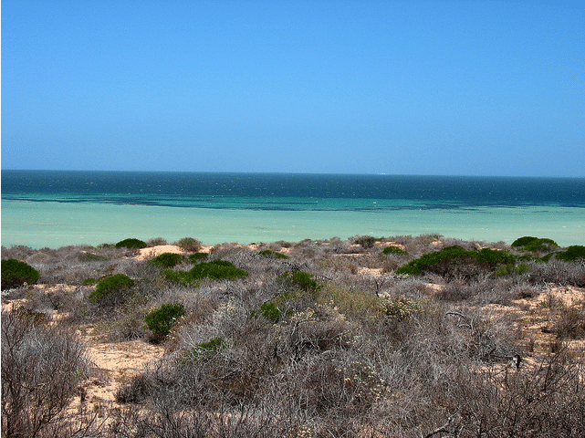 Coral-Bay Western Australia