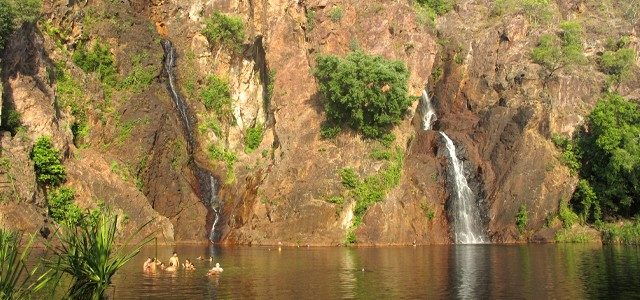 Litchfield National Park: What to do and see