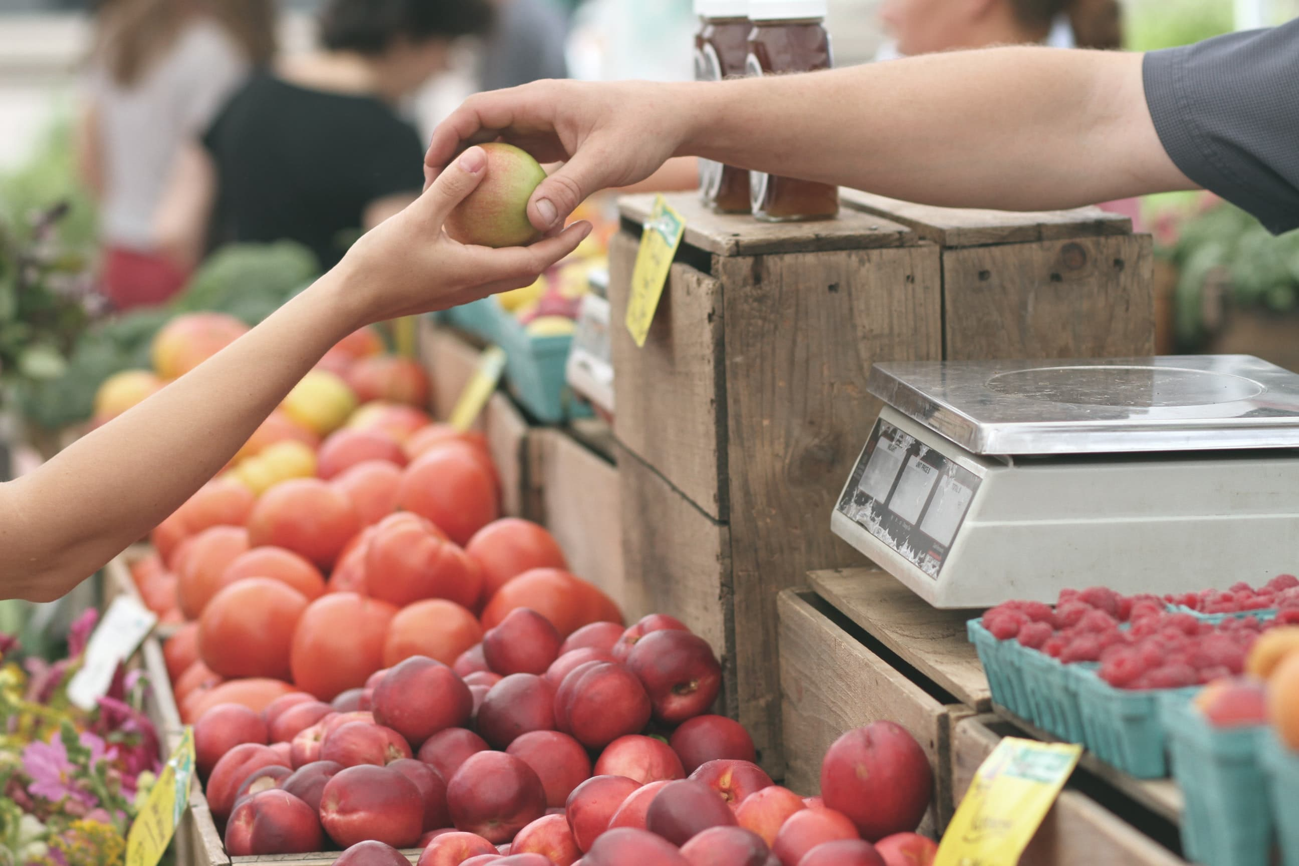 work and travel tips for australia farmers market