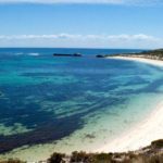 Visit Rottnest Island: One day experience