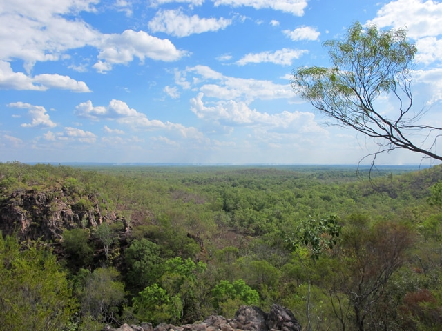 litchfield national park 9