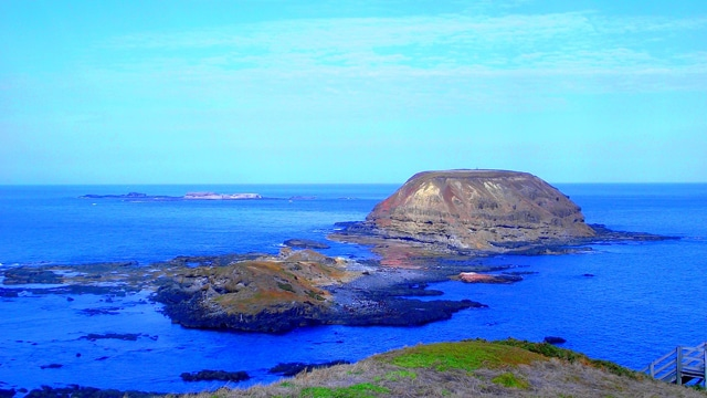phillip island 6