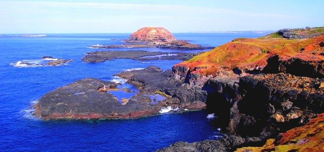 Phillip Island – The Penguin Island