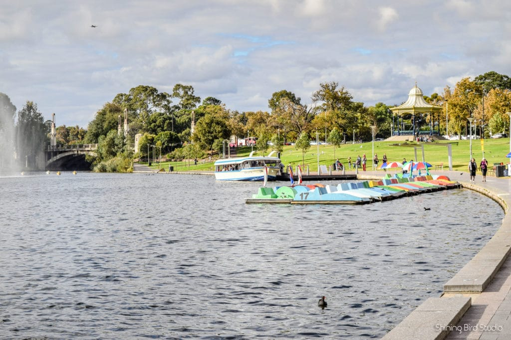 things to do in adelaide 5