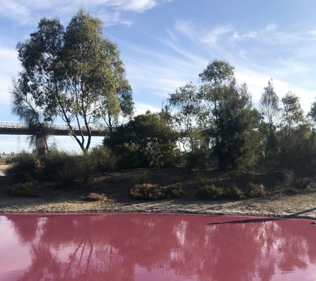 visit melbourne pink lake