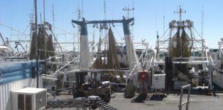 Prawn-vessel job experience