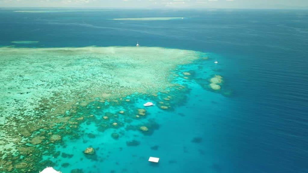 diving Australia great barrier reef